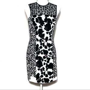 French Connection Size 8 Animal Mechanical Dress